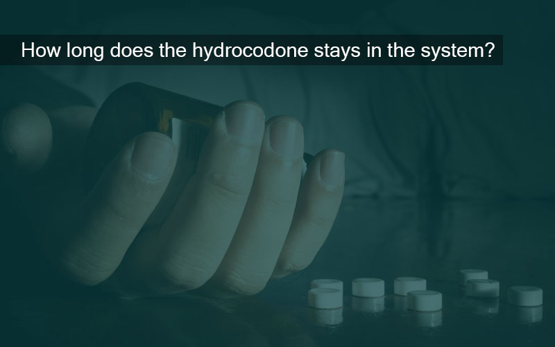 how long does hydrocodone stay in our system